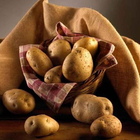 Patata de Prades