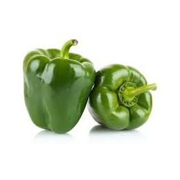 Pimiento verde 500 gr.