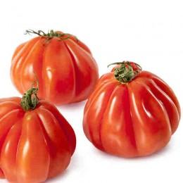 Tomate cor de bou 500 gr.