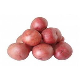 Patata roja 1 KIlo
