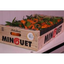 Mandarina Clementina Extra 500 g.